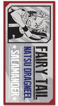 Fairy Tail Natsu Dragneel   Badetuch / Strandtuch / Handtuch