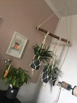 Blumenampel Complet Kit