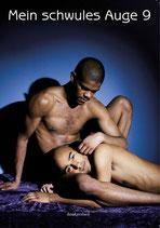 Mein schwules Auge 09. Das schwule Jahrbuch der Erotik 2012/2013