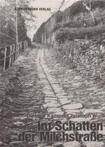 Kamper, Dietmar, Wulf, Christoph: Im Schatten der Milchstraße