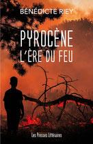 Pyrocène l'ère du feu - Bénédicte Riey