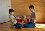 """Elternworkshop """"Konfliktlösung ab dem Krippenalter"""""""