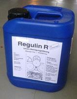 Liquido Lavaggio Regulin R