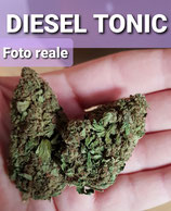 diesel tonic