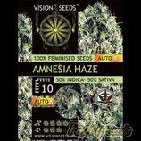 AMNESIA HAZE AUTO - VISION SEEDS
