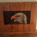 Adler schaut nach links quadrat