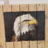 Adler schaut nach rechts quadrat