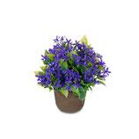 Mini-Blume blau in Topf