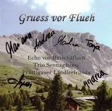 CD Gruess vor Flueh