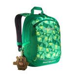 HUSKY BAG JR 10 green
