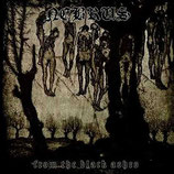 """Nebrus - """"From the Black Ashes"""""""