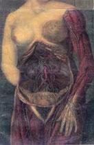 "Realm of Carnivora - ""EP's 2008-2010"""
