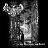 """Asenheim / Sturmfolk - """"Nur ein Flügelschlag ins Dunkel - The Forgotten Pages"""""""