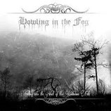 "Howling In The Fog - ""Falling Into The Void Of This Unknown Fate"""