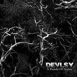 "Devlsy - ""A Parade of States"""