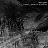 "Colorless Forest - ""Imprints of Dreams in Hyaline Ice"""