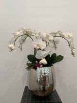 Orchideenvase Silvertopf gehämmert 110