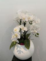 Orchideen Hochglanz Topf weiss 109