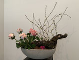 Rosenschale Betontopf mit Naturholz und Kirschblüten Nr 114