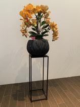 Orchideen gelb in Kunststoffgefäss inkl. Innentopf (Anthrazit) Nr 118