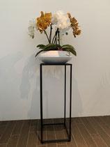 Weisse und gelbe Orchideen in weisser Keramikschale Nr 119