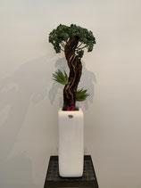 Bonsai handgefertigt mit Sukkulenten (Naturstamm) Nr 121