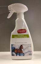 Brandhof Make it Shine spray