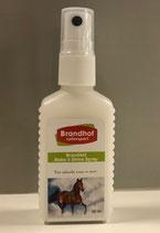 Brandhof Make it Shine  spray 50ml
