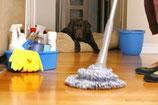 Limpieza de día
