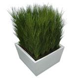 CONIC wit laag 40cm met gras