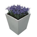 CONIC wit middel 75cm met lavendel