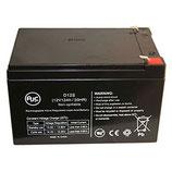 Accu's voor RM modellen (12Ah) BAT5001A