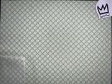 Baumwollstoff gemustert grün 001