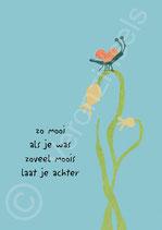 ZOVEEL MOOIS  LAAT JE ACHTER - VERONZINELS (B190)