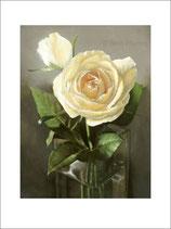 Rosen No 08, Kunstkarten