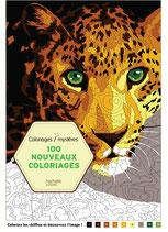 100 Nouveaux Coloriages Mystères - kleuren op nummer