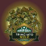 TRINCIATO GOLD - C+ Farm