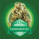CANNABIDIOL - C+ Farm