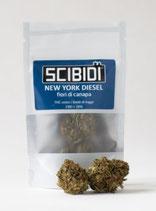 NEW YORK DIESEL - Scibidì