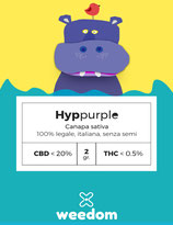 HYPPURPLE - Weedom