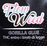 GORILLA GLUE - Flow Weed