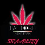 STRAWBERRY - Fattore Hemp Farm