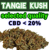 TANGIE KUSH - MIB Made In Bolo