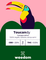 TOUCANDY - Weedom