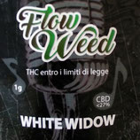 WHITE WIDOW - Flow Weed