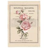 redesign Transferfolie Motiv  -  Beautiful Botanist