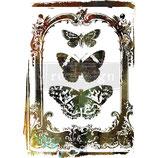 redesign Transferfolie Motiv  -  Butterfly Frame