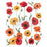 redesign Transferfolie Motiv  -  Poppy Gardens