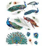 redesign Transferfolie Motiv  - Peacock Dreams