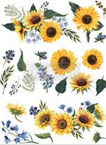 redesign Transferfolie Motiv  -  Sunflower Fields